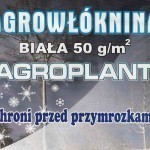 Agrow____knina_z_5252ad5c9583b