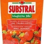Substral_Magiczn_4ee9e41665370